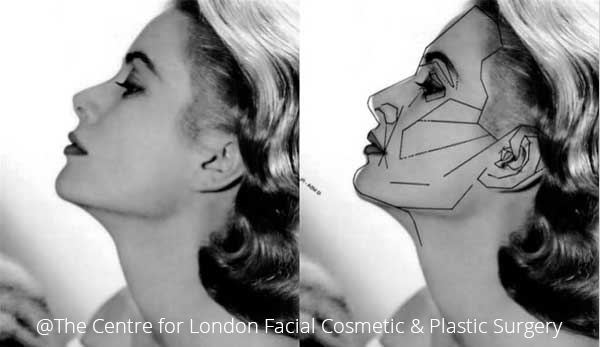 Facial Beauty and Balance in Plastic Surgery | London