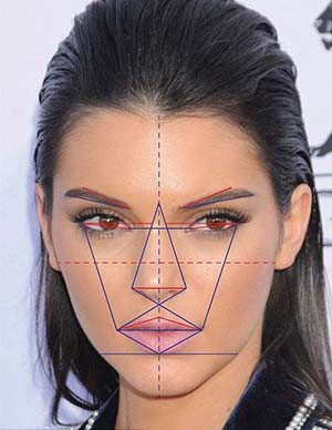 Woman's face, symmetry scheme with lines on face, Middle Eastern Rhinoplasty