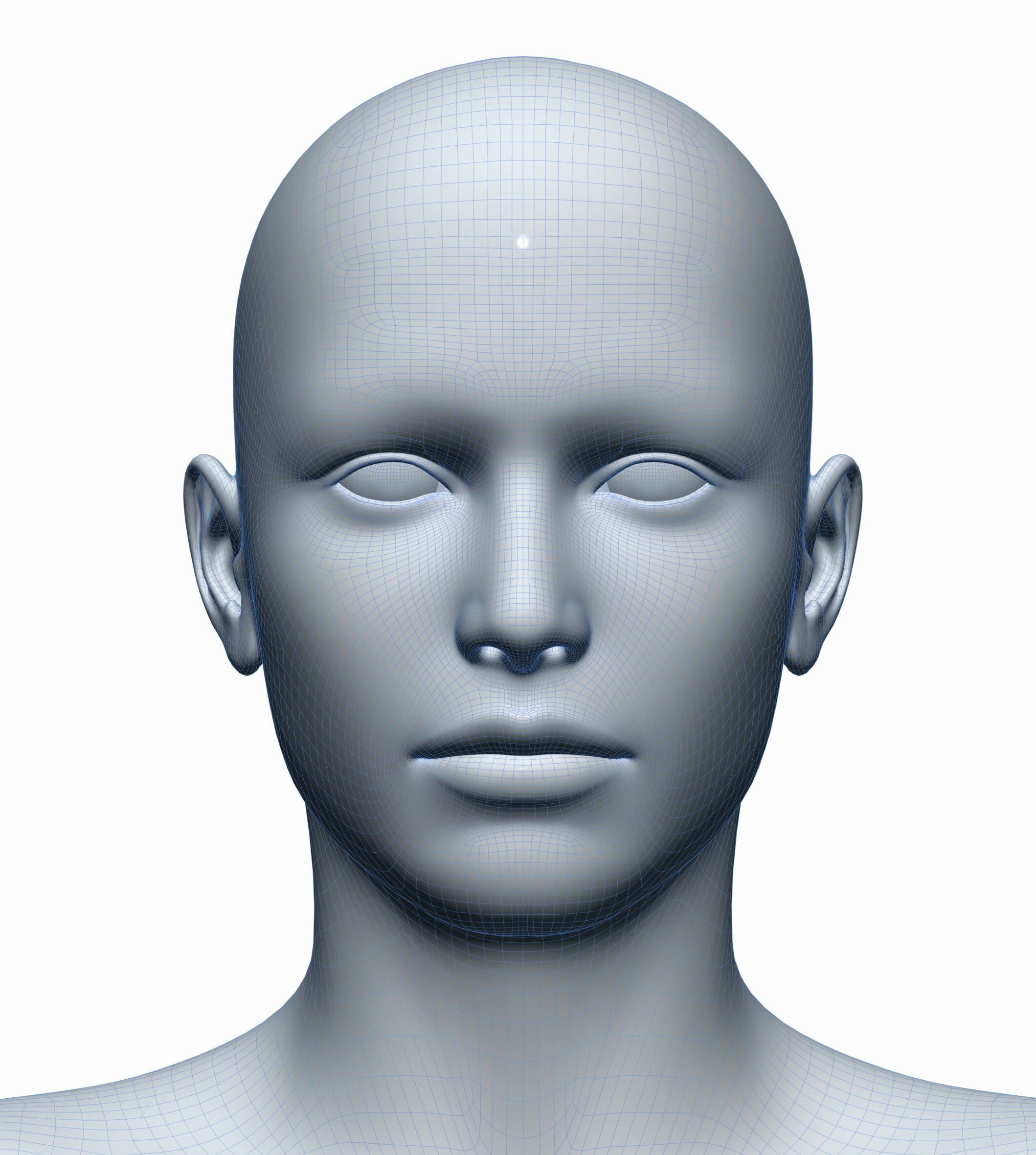 3d scheme - head photo